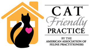 Cat friendly practice